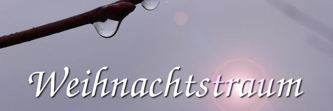 gvss_aktuell_adventsgottesdienst_2012_660x220